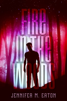 FireInTheWoods.v6-Book1-Final