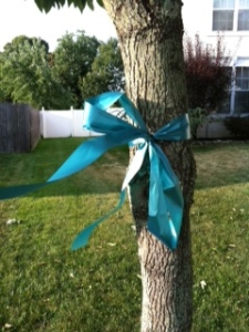 The ribbon to support Ovarian Cancer Awareness on my Neighbor's tree.