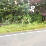 More power lines laying on the ground