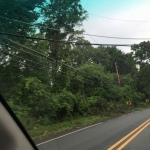 Power lines left on the ground because there just were not enough people or equipment to fix them quickly